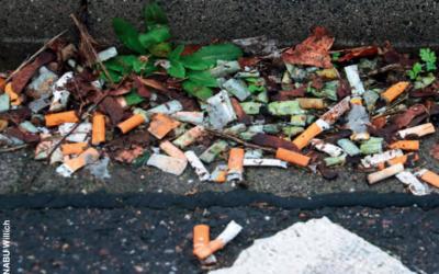 Auf der Kippe – Wie gefährlich sind Zigarettenstummel?