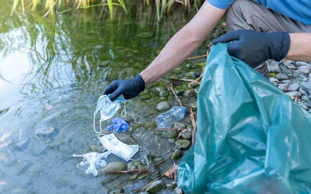 Corona-Müll wird zur Gefahr für Wildtiere